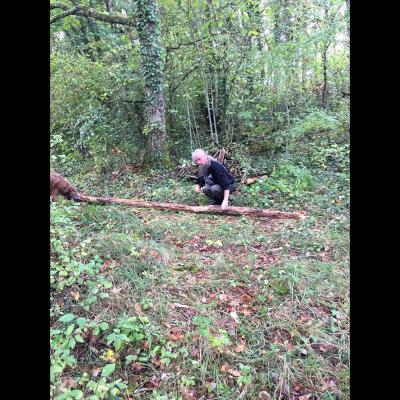 Dunon prépare du bois