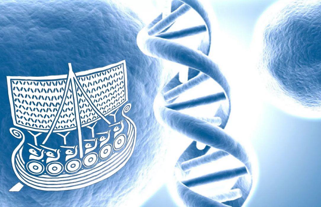 ADN viking