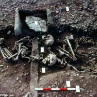 Une sépulture potentiellement sacrificielle de 4 jeunes individus à Repton - Photo: Martin Biddle / SWNS.com