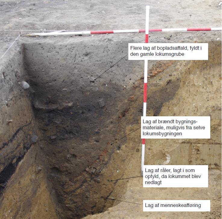 Les lignes sombres correspondent aux différentes couches d'excrément dans ce qui pourrait être les plus anciennes toilettes, de l'Âge Viking, au Danemark - Photo: Anna S. Beck
