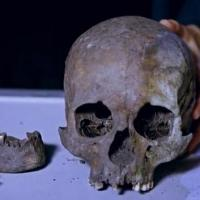 Découverte du crâne d'un guerrier viking décapité à Svendborg - Photo: Skærmprint SDU