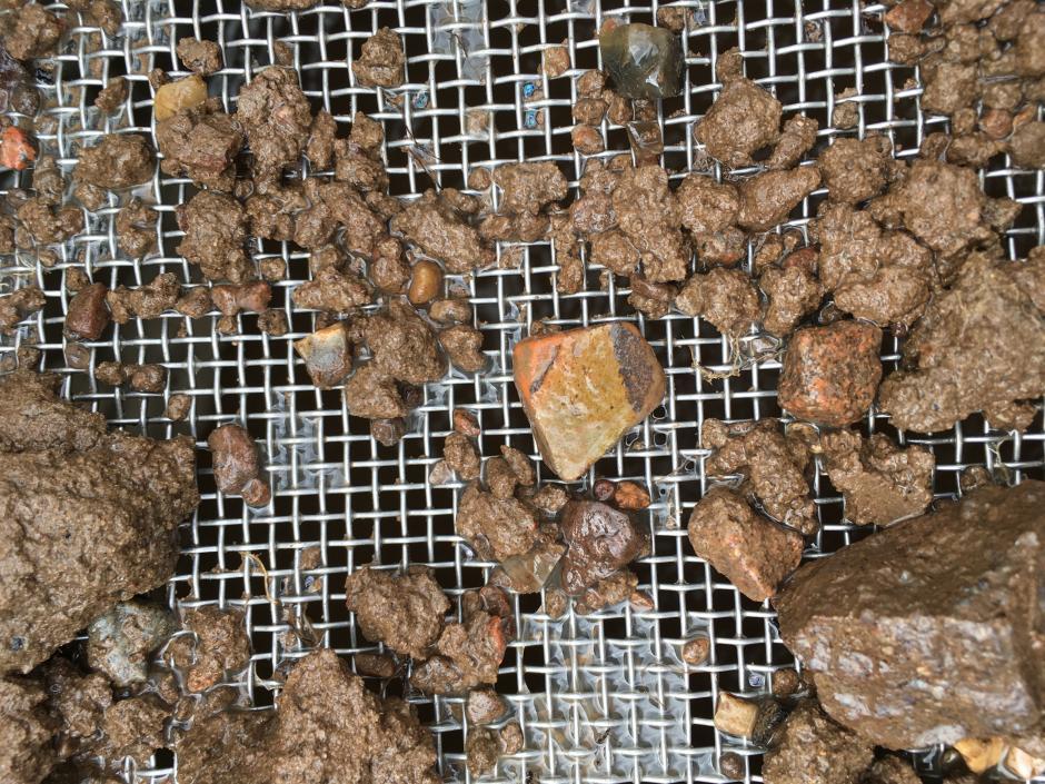 Fragment de poterie découvert à Borgring - Photo Nanna Holm