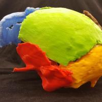Reconstruction en 3D du crâne de Gorm l'Ancien - Photo: Marie Louise Jørkov