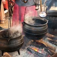 Danemark, les Vikings auraient fabriqué leur propre vin