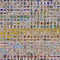 Danemark - Perles de verre trouvées à Ribe - Photo: Musée du Jutland du Sud-Ouest
