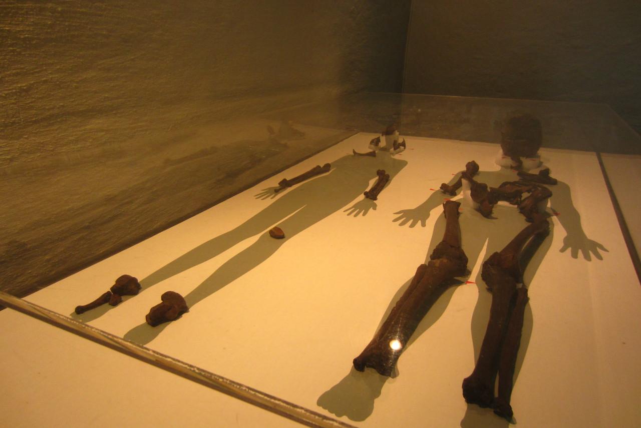 Squelettes des défuntes de la sépulture d'Oseberg