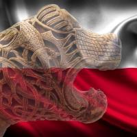 Les vikings en Pologne