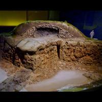 Reconstitution de la sépulture viking de l île de Groix