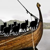 Les vikings voyageaient avec des chats image par videnskab dk
