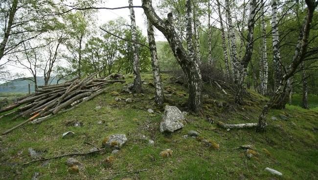 Eggjo, le deuxième tumulus de l'Âge Viking qui sera ouvert à Borgund - Photo Odd Helge Brugrand pour NRK