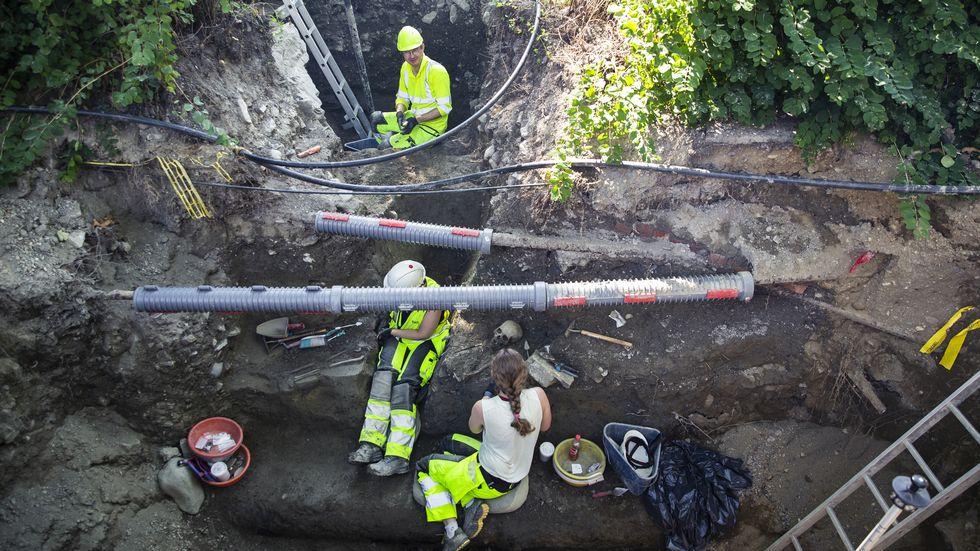 Norvège - Les archéologues se demandent s'ils ont découvert la sépulture d'Harald Hardrada - Photo: adressa.no