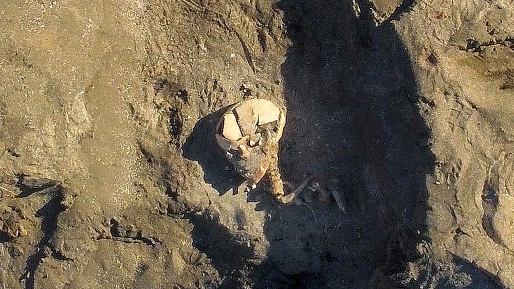 Norvège - Un bateau tombe et un squelette du début de l'Âge Viking découverts par un fermier sur l'île de Jøa - Photo: Musée des Sciences NTNU