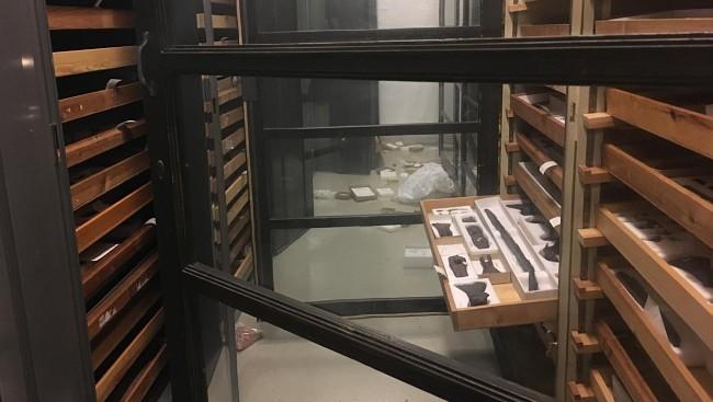 La réserve cambriolée du musée de l'Université de Bergen - photo: Kari K. Årrestad