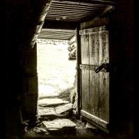 Photo de couverture de l'ouvrage viking Worlds, Things, Spaces and Movement