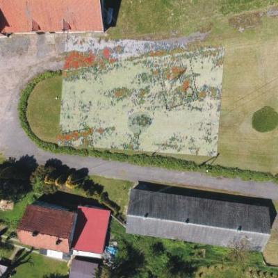 Pologne - Deux maisons et de possibles crânes humains découverts à Truso grâce au géoradar - Photo: Fabian Welc / Geo Archeo Service