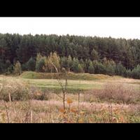 Site du GorodichtchedeSarskoye