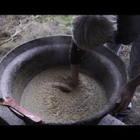 Une recette irlandaise de bière à base d'orge, de bruyère et de myrte datant du VIIIème siècle expérimentée par des archéologues