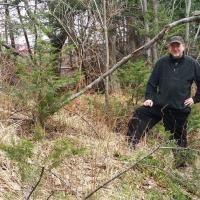 Wayne Macissac se tient devant ce qu'il estime être les vestiges d'un mur de fortification viking